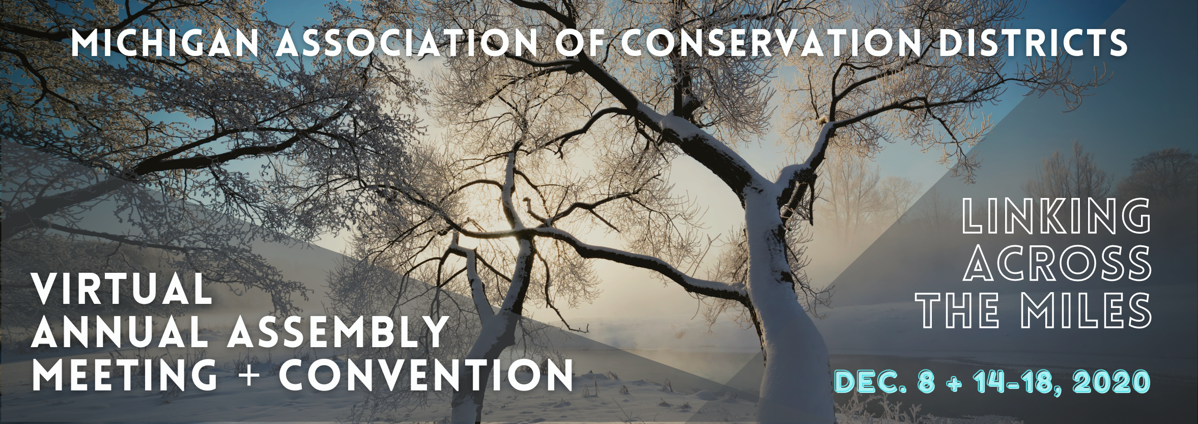 2020 Convention Banner